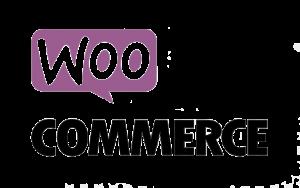 Woo Commerce Web Development